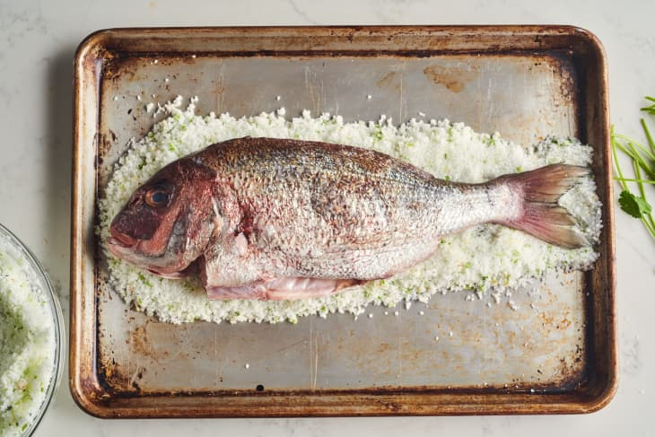 fish sits on top of layer of salt
